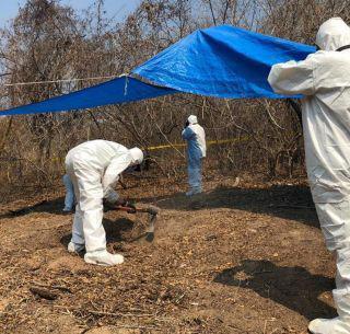 Encontraron 15 cadáveres en una fosa en Lagos deMoreno